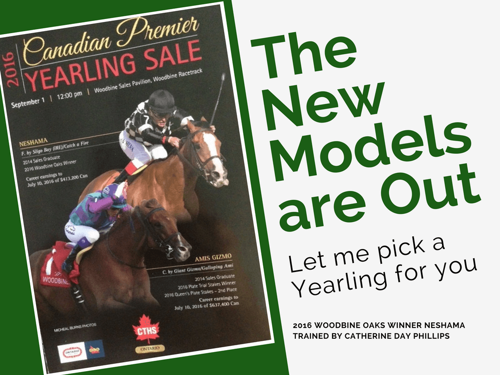 CTHS Yearling Sale Promo-2