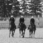 Training as a Trio