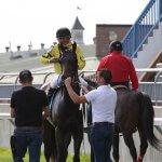 Mr Havercamp & Jockey Eurcio Rosa da Silva